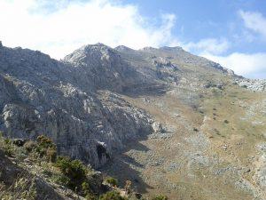 Valle de Ambroz     días 6 al 13 de agosto